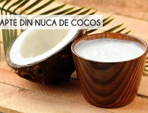 LAPTELE DIN NUCA DE COCOS